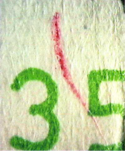 Рис. 30. Имитация защитного волокна, выполненная цветным карандашом.
