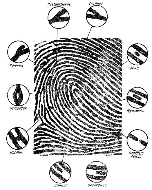 4 фотки 1 слово Word (айфон, телефон) - ответы на все уровни из 7 букв | 656x524