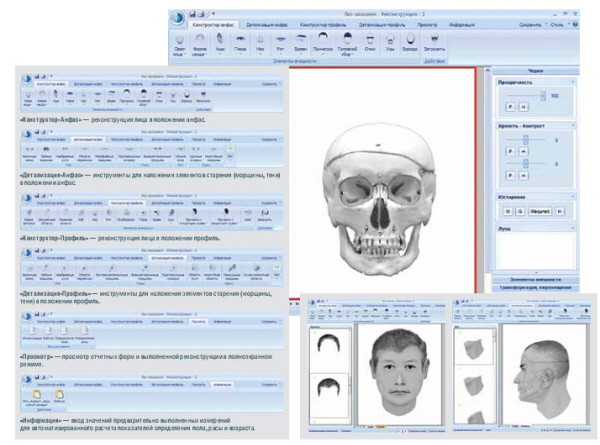 Программный комплекс Реконструкция-2 для восстановления прижизненного облика человека по его черепу