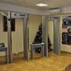 Стационарный арочный металлодетектор Дозор
