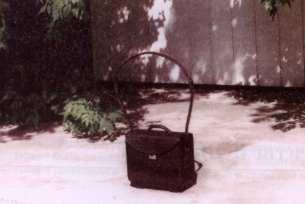 Постановщик помех Родиола Рд-962